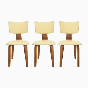 Plywood Chairs from De Boer Gouda, 1953, Set of 3