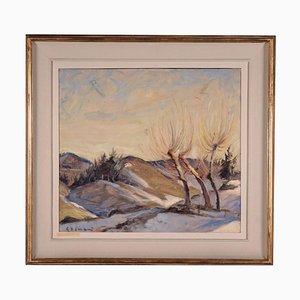 Beppe Grimani (canvas W: 50.00cm, H:45.00 Cm.)