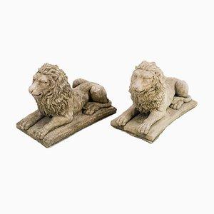 Kleine Liegende Löwen, 2er Set