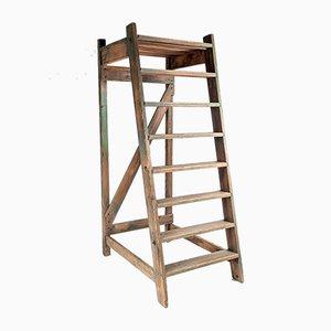 Wooden Shop Steps