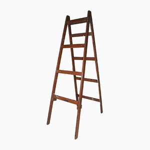London Film School Ladder
