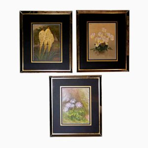 Affiches The Garden, W. Robinson, English Chromolithographic Prints, Set of 3