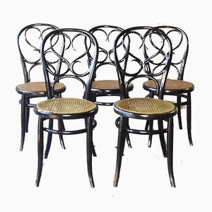 Antique Bohemian Bentwood Dining Chairs from Fischel, Set of 5