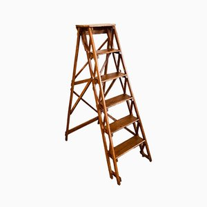 Wooden Step Ladder, 1950s