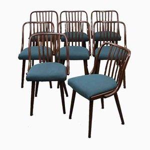 Beistellstühle von Antonin Suman für Jitona, 1960er, 8er Set