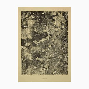 Jean Dubuffet - Disparate - Original Lithograph - 1959