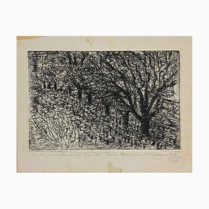 Unknown - Trees - Original Etching on Paper - Early 20th Century