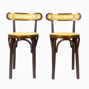 Wood & Straw Dining Chairs in the Style of Thonet, Vienna, Set of 2