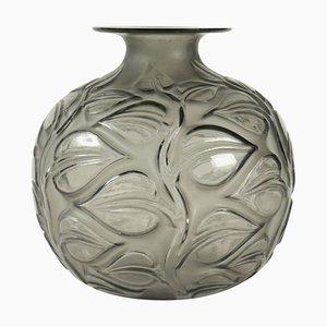Gray Sophora Vase by René Lalique