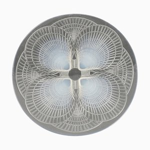 Opalescent Coquilles Pattern Plates by René Lalique, Set of 11