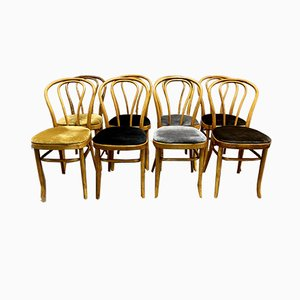 Bistro Chairs from Thonet, 1950s, Set of 8