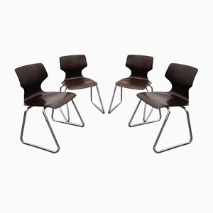 Pagwood Dining Chairs by Elmar Flötotto, 1970s, Set of 4