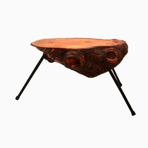Austrian Tree Trunk Coffee Table, 1950s