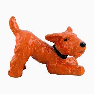 Ida Meisinger for Goldscheider, Playful Terrier in Glazed Ceramic