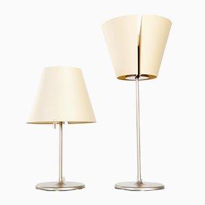 Italian Melampo Table Lamp by Adrien Gardère