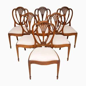 Antique Sheraton Style Dining Chairs, Set of 6