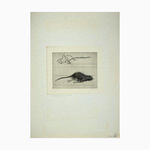 Leo Guida, Die Ratte, Radierung, 1972