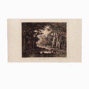 Narcisse Diaz de la Pena, Intérieur de Forêt, Etching by Diaz, 1880s