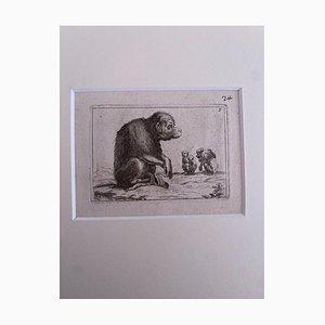 Antonio Tempesta, The Monkey, Etching, 1610
