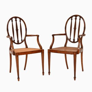 Antique Satinwood & Cane Armchairs, Set of 2