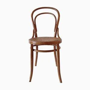 Antiker Nr. 14 Stuhl aus Bugholz von August Türpe, Dresden