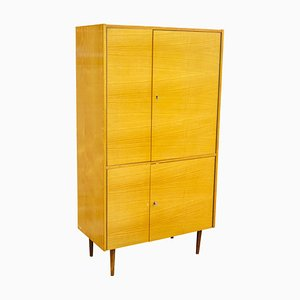 Cabinet from UP Závody, 1960s