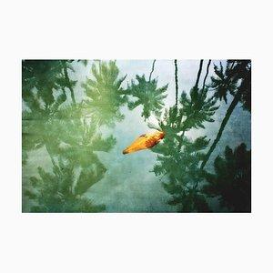 Gelber Blatt-Oversize Pigment-Druck, signierte Limited Edition, 2012