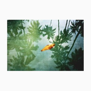 Yellow Leaf Oversize Archival Pigment Print, Signed Limited Edition, 2012
