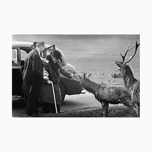 Churchill in Richmond Park, Silver Gelatin Fibre Print, 1963