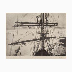 le Terra Nova (1910-13), 2020