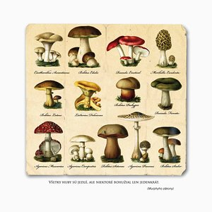 Mushrooms Are Eatable But Some of Them Only Once Print