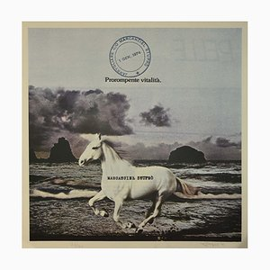 Claudio Cintoli, Horse by the Sea, Offset vintage, 1974