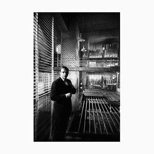 Goldfinger, Silver Grainatin Resin Print, Encadrée en Blanc par Bob Haswell