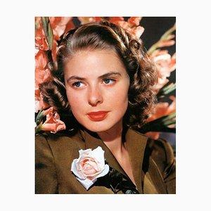 Ingrid Bergman with a Rose, Gerahmt von Black by Everett Collection