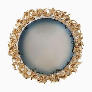Miroir Carpe par MYDRIAZ