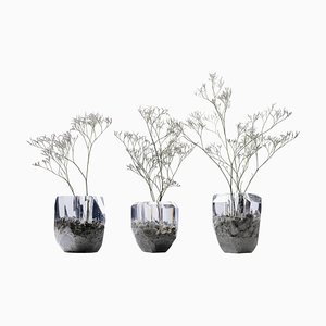 In Disguise Handmade Vase by Jule Cats, Set of 3