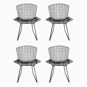Vintage Dining Chairs by Harry Bertoia for Knoll Inc. / Knoll International, Set of 4