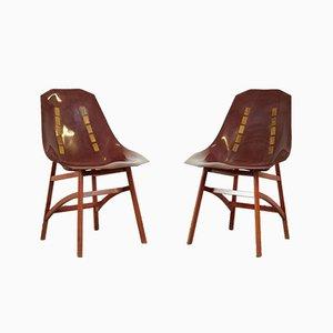 Chaises Prototype par Ico Luisa Parisi, 1960s, Set de 2
