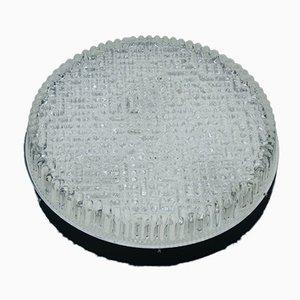 Große Runde Mid-Century Bubble Glas Decken- oder Wandlampe