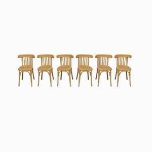 Curved Beech Bistro Dining Chairs, 1950s, Set of 10