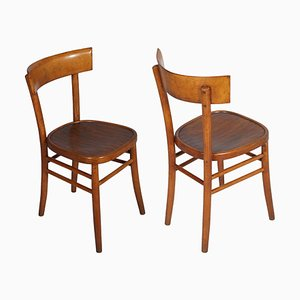 Mid-Century Dining Chairs from ISA Bergamo, 1950s, Set of 6