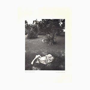 Douglas Prince - Brian, Weiße Blume und Haus - Offsetdruck - 1980er