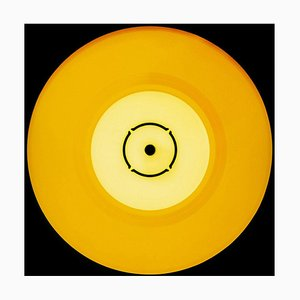 Collezione Vinyl, Double B Side Sunshine - Pop Art concettuale, Fotografie a colori, 2014