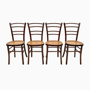 Italian Curved Beech Dining Chairs from Antonio Volpe, 1940s, Set of 4