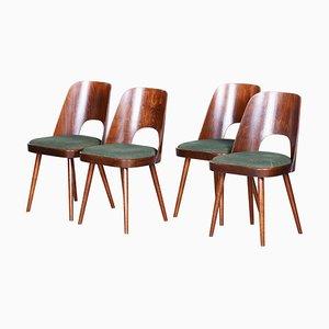 Chaises en Hêtre Marron et Vert par Oswald Haerdtl pour Ton, République Tchèque, 1950s, Set de 4