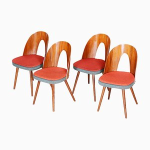 Czech Brown and Red Walnut Chairs by Antonín Šuman, 1950s, Set of 4