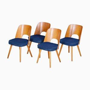 Sedie in legno marrone e blu di Oswald Haerdtl, Repubblica Ceca, anni '50, set di 4
