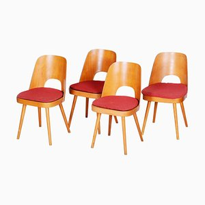 Czech Brown and Red Beech Chairs by Oswald Haerdtl, 1950s, Set of 4