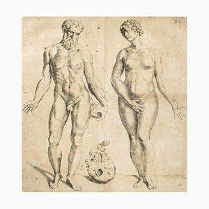 Andrea Vesalio, Man & Woman / De Humani Corporis Fabrica, 1642