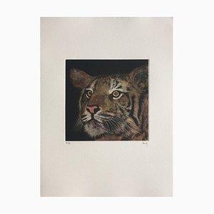 Tigre, Henry, Mezzotint